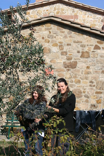 Olives_Nedra Belinda_ 2009 003
