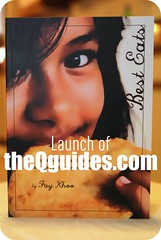 theQguides launch