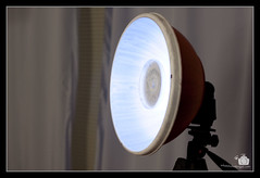 DIY Beauty Dish Triggering