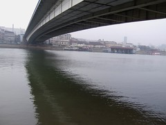 under the bridge (gatalinkica) Tags: bridge november river belgrade beograd sava mistyday brankovmost