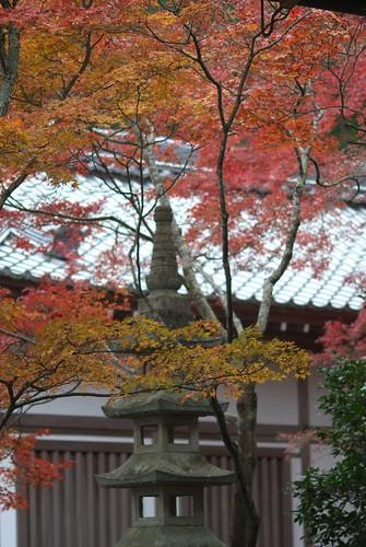 Jojakukoin temple (常寂光院)