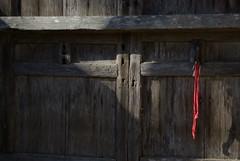 a red ribbon (fujiki3) Tags: hiyoshi