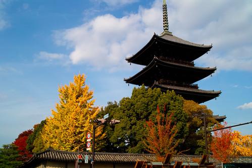 東寺2009.11.27