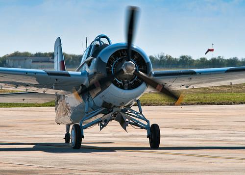 Warbird picture - F4F Wildcat