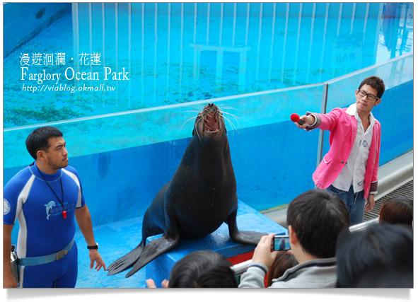 花蓮海洋公園一日遊12