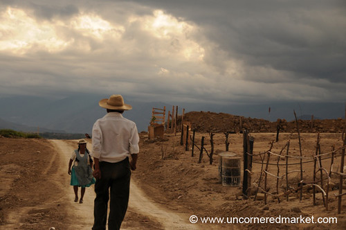 Crossing Paths in Tarija, Bolivia