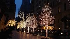 New York '09 (Christine Amherd) Tags: christmas xmas usa ny newyork night america weihnachten creativity cosmopolitan ine amerika merrychristmas bigapple 2009 weltstadt passionate christmasspirit froheweihnachten mypassion weihnachtsstimmung grossstadt weihnachtszauber christmasmagic xmasinnewyork cosmopolitancity christinescreativityphotography christinesphotography