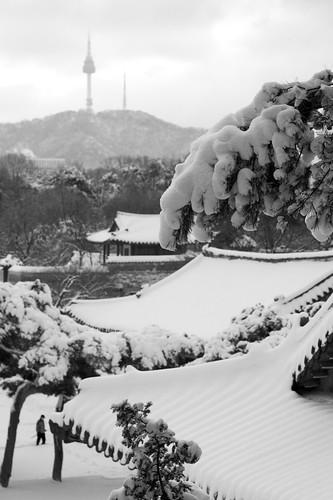 Snowy Namsan II