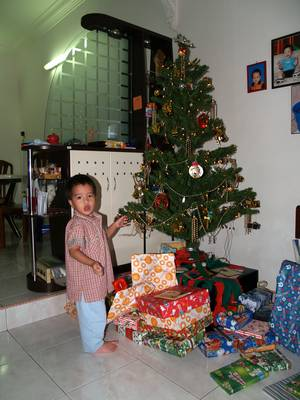 Julian and the Christmas tree