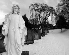 white jesus 2 (djemde) Tags: nottingham white snow cemetary jesus