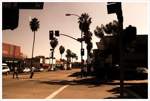 Palm LA