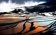 (AhRay) Tags: china travel reflection landscape  yunnan liquid  paddyfield  riceterrace yuanyang sunraise      20faves   superaplus aplusphoto ahray platinumheartaward