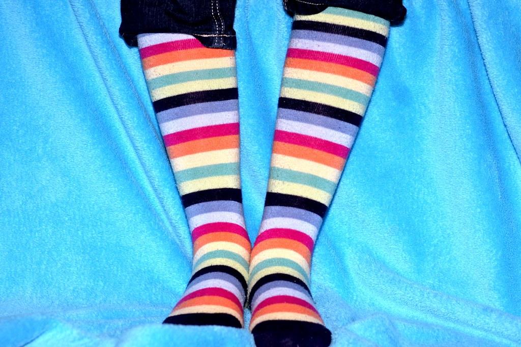 4 Feb/365 - stripes