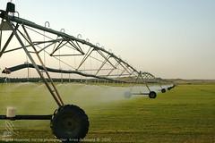 محوري المزرعة (anas_albleahy) Tags: 2 المزرعة محوري
