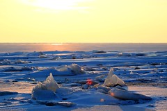 The mini icebergs (kees straver (will be back online soon friends)) Tags: blue sun snow mountains ice water yellow landscape iceland sneeuw thenetherlands glacier iceberg icebergs ijsselmeer ijs northholland packice uitdam kruiendijs canoneos5dmarkii keesstraver