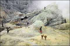 workplace - Kawah Ijen (Maciej Dakowicz) Tags: indonesia asia southeastasia sea java kawahijen lake sulphur sulfur heavy work labour environment hazardous smoke