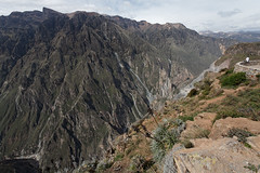 baudchon-baluchon-canyon-colca-IMG_8599-Modifier