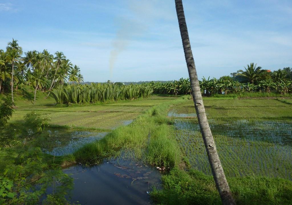 Mindanao-Butuan-Cagayan (1)