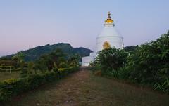 World Peace Pagoda (happy.apple) Tags: nepal garden geotagged temple dawn pokhara worldpeacepagoda