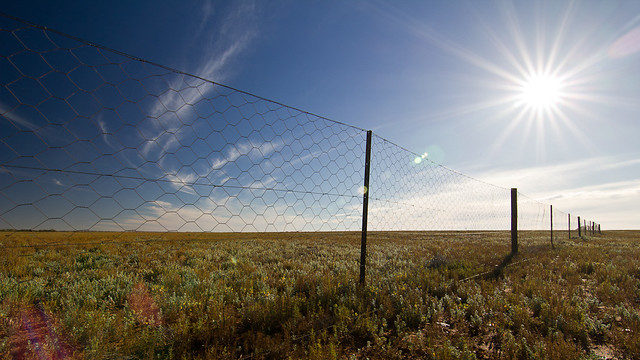 The Dog Fence, 5500km