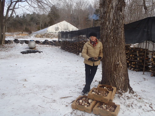 Nicola Macpherson, agroforester, with her mushrooms and a lot more on her Missouri forestry farm.