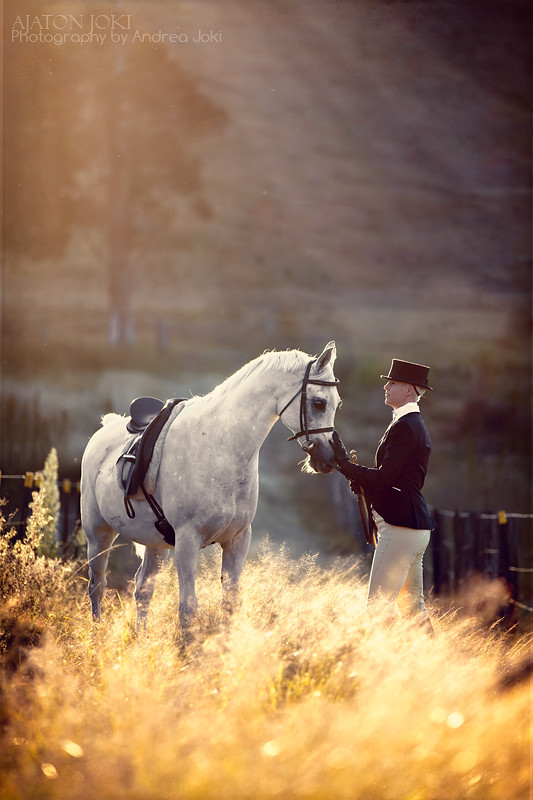 Arabian Stud Farm sunset shoot, horse and English riding habit