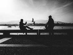 sitting on the dock of the bay (matthias hämmerly) Tags: sun winter lake zürichsee zuerich zürich street streetphotography swiss switzerland shadow silhouette monochrom black white grain bw candid cold zuerichsee