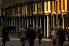 colonnato (akabolla) Tags: piazzatrentoetrieste colonnato ferrara konica20035