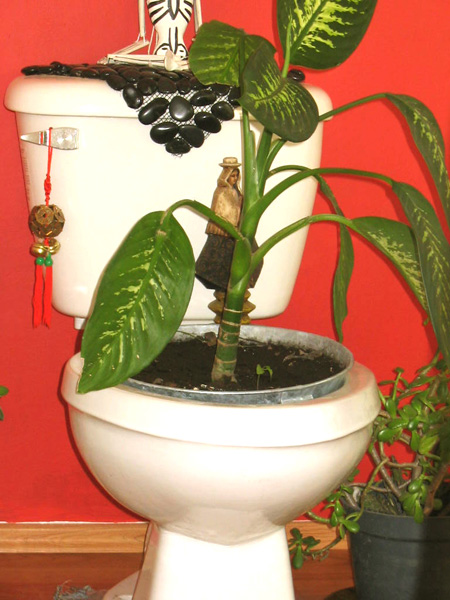 Toilet flower pot