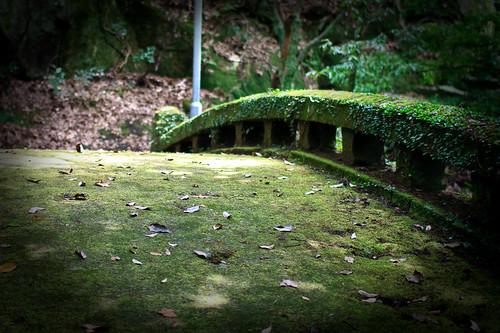 08.10 Jigenji Park - Kagoshima 1