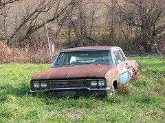1965 BUICK SKYLARK IN 2009 (richie 59) Tags: blue cars abandoned car rural america outside buick rust automobile gm country rusty headlights grill rusted newyorkstate headlight oldcar oldcars 2009 automobiles newpaltz rustycar skylark nystate rustycars rustyoldcars rustyoldcar americancars generalmotors 2000s abandonedcar hudsonvalley grills 2door americancar motorvehicles ulstercounty abandonedcars junkcar twodoor buicks buickskylark newpaltzny junkcars uscar uscars midhudsonvalley oldrustycar ulstercountyny 1965buickskylark oldbuick buickcoupe 1960scars oldrustycars gmcar gmcars oldbuicks 1960scar 1965buick nov2009 richie59 nov242009 1965skylark