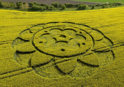 uk-crop-circle
