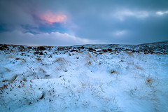 Profound Subtleties (jasontheaker) Tags: uk winter sunset england snow west open yorkshire moor spaces ilkley jasontheaker cowandcalf