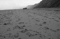 walkers prints (bridgetmckenz) Tags: photowalk coasts