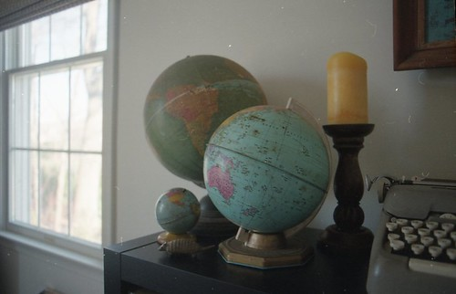 still life with globes and armadillo