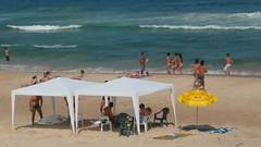 galera ixperta (alvez) Tags: reveillon summer brazil sun sol praia beach brasil playa verano brazilian galera garopaba ferrugem brasileiro sul guarda calor guardadoembau verao