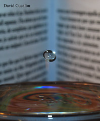 Drops and books (David Cucaln) Tags: macro water drops agua books olympus gotas aigua fineartphotography gotes cucalon davidcucalon