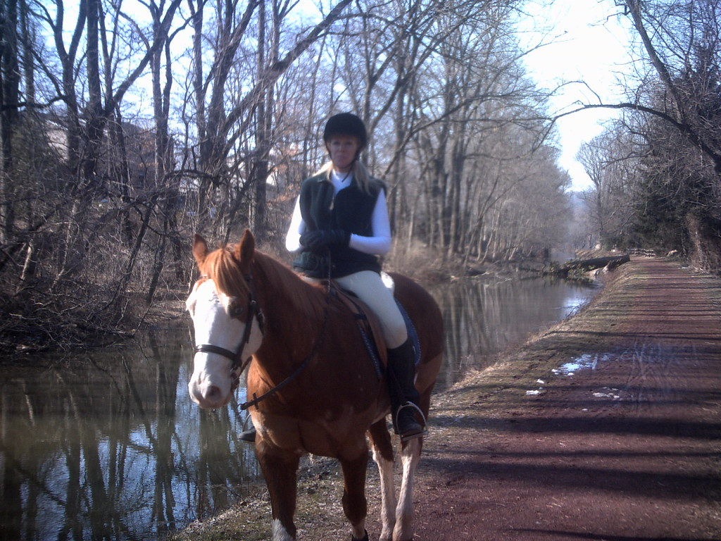 Horse and rider on towpath at Washington Crossing . Day 81