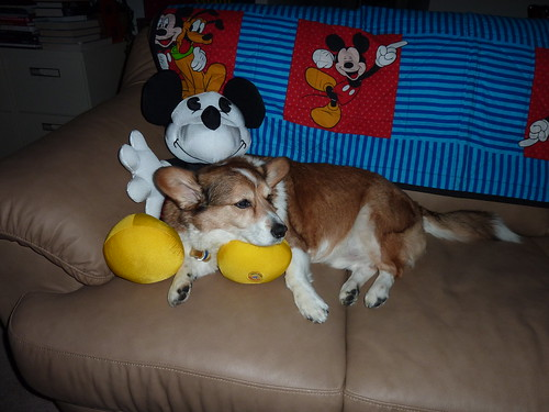 Collen and Mickey