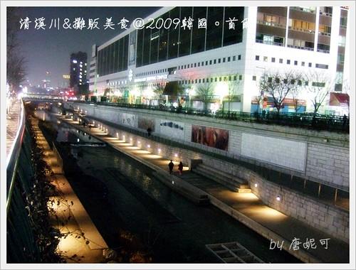 唐妮可☆吃喝玩樂過生活 拍攝的 20091223清溪川與攤販美食_17。