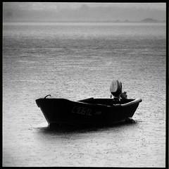 (António Bandeira) Tags: bw 6x6 film portugal monochrome rain rollei analog rolleiflex river mono boat blackwhite shanghai pb negative epson filme 100asa automat riominho schneider pretobranco xenar selfdeveloped v500 gp3 shanghaigp3 ilfotechc epsonv500 modelk4a antóniobandeira