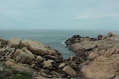lobos marinos (randomrules!) Tags: lobos marinos cabopolonio uruguay rocas costa rocha