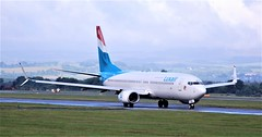 LX-LBA  BOEING 737-800 (douglasbuick) Tags: aircraft boeing b737800 lxlba jet plane luxair egpf glasgow airport aviation scotland flickr taxiing airliner airlines airways nikon d40