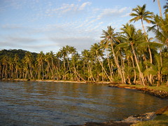 Beach at the Truk Blue Lagoon Resort (mattk1979) Tags: ocean trees island paradise pacific palm tropical weno chuuk federatedstatesofmicronesia truklagoon