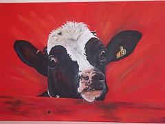 Curious Noortje (schildersverdriet) Tags: art kunst zwart wit acryl koe kleurrijk realistisch koeienkunst
