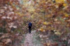 Běhání s roztroušenou sklerózou