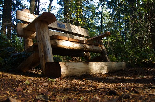 memorial bench on Cougar Mountain