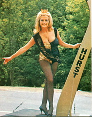 1966,Linda Vaughn,Hurst Golden Shifter Girl (torinodave72) Tags: girl golden linda nascar firebird miss vaughn pure shifter hurst nhra