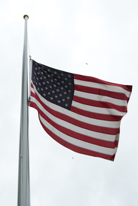 Day 33: Flag