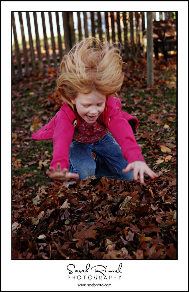 leaf fun 24
